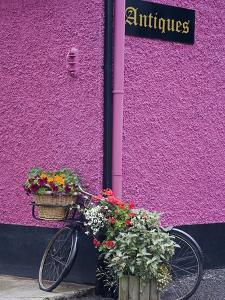 Bicycle and Flowers Outside Antique Store in Carrick by Richard Cummins
