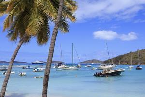 Boats in Cruz Bay, St. John, United States Virgin Islands, West Indies, Caribbean, Central America by Richard Cummins