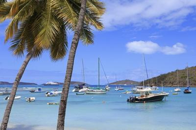 Boats in Cruz Bay, St. John, United States Virgin Islands, West Indies, Caribbean, Central America