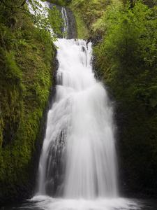 Bridal Veil Falls State Park in Columbia River Gorge, Greater Portland Region, Oregon by Richard Cummins