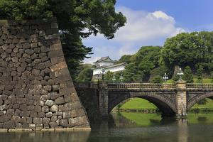 Imperial Palace, Tokyo, Japan, Asia by Richard Cummins