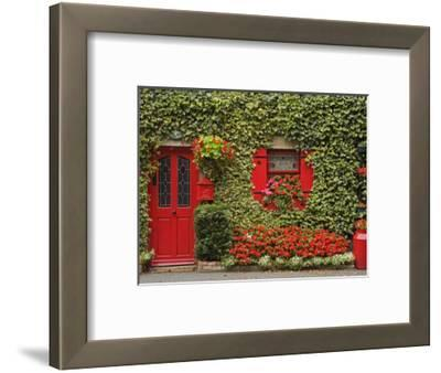 Ivy Covered Cottage, Town of Borris, County Carlow, Leinster, Republic of Ireland, Europe
