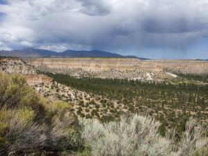 Landscape Near Los Alamos, New Mexico, United States of America, North America by Richard Cummins