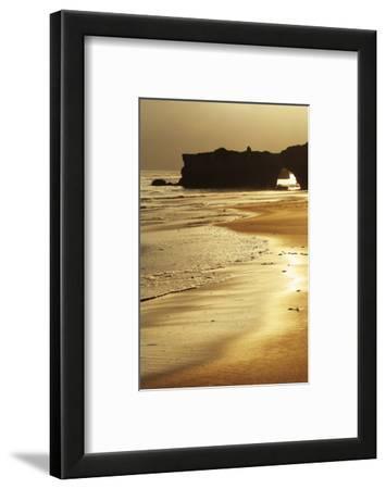 Lighthouse State Beach, Santa Cruz, California, United States of America, North America