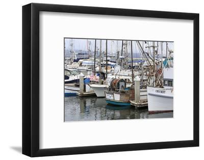 Marina in Pillar Point Harbor, Half Moon Bay, California, United States of America, North America