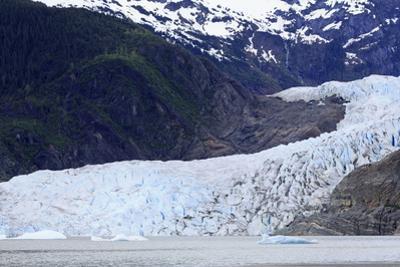 Mendenhall Glacier, Juneau, Alaska, United States of America, North America by Richard Cummins