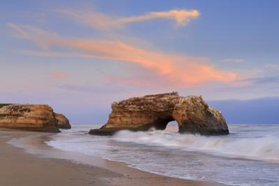 Natural Bridges State Park, Santa Cruz, California, United States of America, North America by Richard Cummins
