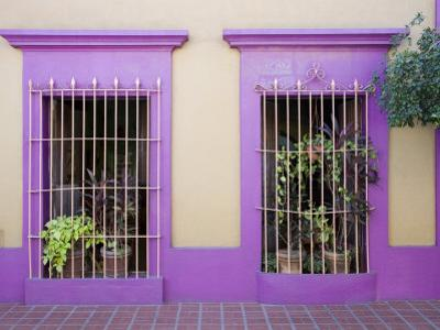 Nid Art Gallery, Old Town District, Mazatlan, Sinaloa State, Mexico, North America