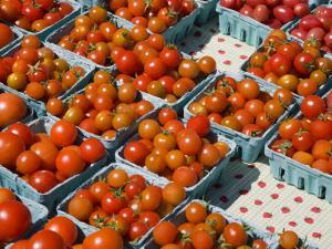 Organic Tomatoes for Sale at Saturday Market by Richard Cummins