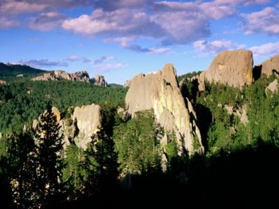 Rock Formations and Pine Forest, Black Hills, South Dakota by Richard Cummins