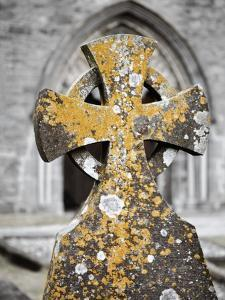 Stone Cross at St. Canice's Cathedral by Richard Cummins