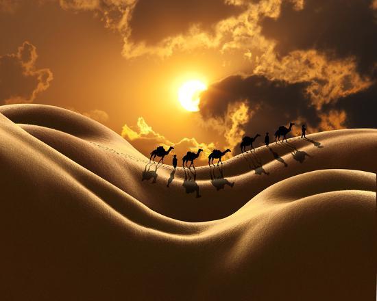 richard-desmarais-camel-back-dream