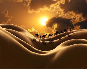 Camel Back Dream by Richard Desmarais
