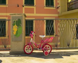 Manarola Child's Tricycle by Richard Desmarais