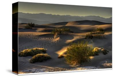 Stovetop Dunes, Death Valley