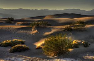 Stovetop Dunes, Death Valley by Richard Desmarais