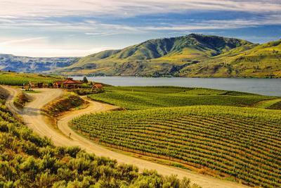Benson Vineyards Estate Winery, Lake Chelan, Washington, USA