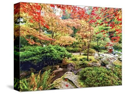 Fall Color in Seattle's Japanese Garden in the Arboretum, Seattle, Washington, Usa