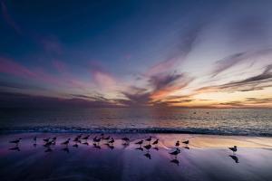 Sunset on Anna Marie Island on Florida's Gulf Coast Florida, USA by Richard Duval