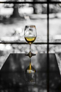 USA, Washington, Woodinville. A glass of white wine reflects a spring day in a Woodinville winery. by Richard Duval