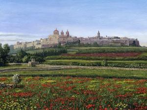 Mdina Poppies Malta 1 by Richard Harpum