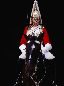 Member of Horse Guards Riding Horse, London, England by Richard I'Anson
