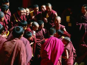 Monks Gathered in Courtyard of Historic Ganden Monastery, Ganden, Tibet by Richard I'Anson