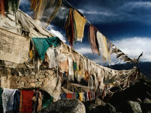 Prayer Flags Above Leh, Ladakh, Leh, Jammu and Kashmir, India by Richard I'Anson