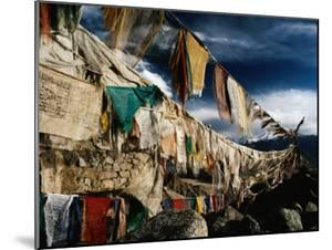 Prayer Flags Above Leh, Ladakh, Leh, Jammu and Kashmir, India by Richard I'Anson
