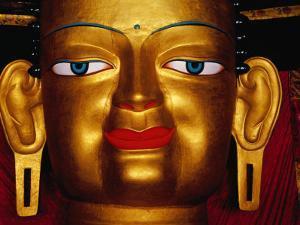 Shakyamuni Buddha Statue at Shey Monastery, Ladakh, India by Richard I'Anson