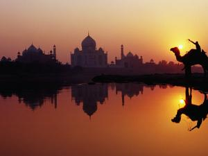 Taj Mahal and Silhouetted Camel and Reflection in Yamuna River at Sunset by Richard I'Anson