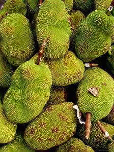 The Jack Fruit, Malaysia by Richard I'Anson