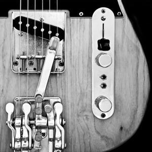 Classic Guitar Detail VIII by Richard James