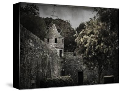 Irish Castle Views VI