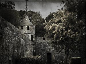 Irish Castle Views VI by Richard James