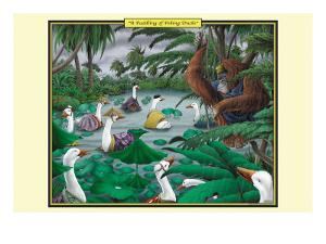 A Paddling of Peking Ducks by Richard Kelly