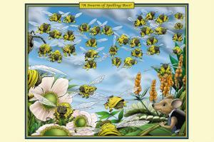 A Swarm of Spelling Bees by Richard Kelly