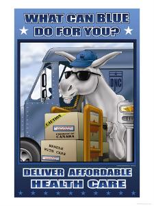 What Can Blue Do for You? Deliver Affordable Health Care by Richard Kelly
