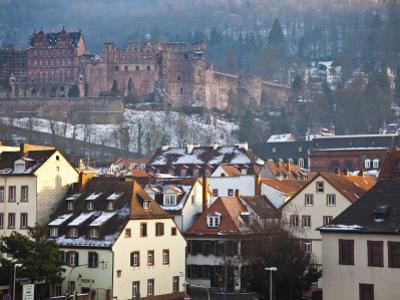 Heidelberg Castle and Houses