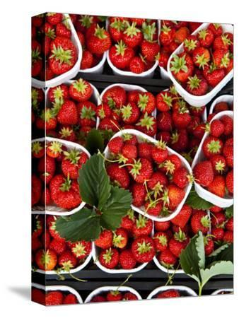 Strawberries for Sale at Market at Campo De' Fiori