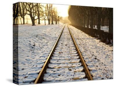 Train Tracks in Snow in Winter