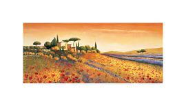 Valley of Sunflowers-Richard Leblanc-Giclee Print