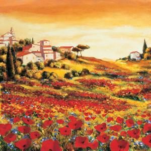 Valley of Poppies by Richard Leblanc