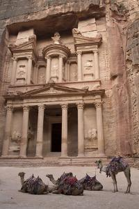 Camels in Front of the Treasury, Petra, Jordan, Middle East by Richard Maschmeyer