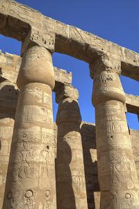 Columns in the Court of Ramses Ii, Luxor Temple, Luxor, Thebes, Egypt, North Africa, Africa by Richard Maschmeyer