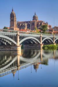 Enrique Estavan Bridge, Cathedral of Salamanca, UNESCO World Heritage Site, Spain by Richard Maschmeyer