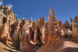 Hoodoos, on the Queens Garden Trail, Bryce Canyon National Park, Utah, United States of America by Richard Maschmeyer
