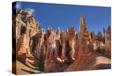 Hoodoos, on the Queens Garden Trail, Bryce Canyon National Park, Utah, United States of America