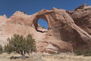 Window Rock Navajo Tribal Park, Arizona, United States of America, North America by Richard Maschmeyer