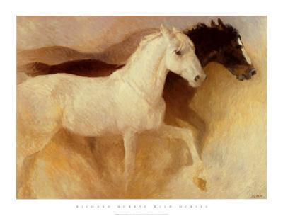 Wild Horses by Richard Murray